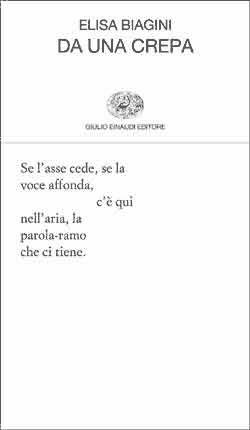 Elisa Biagini: Da una crepa